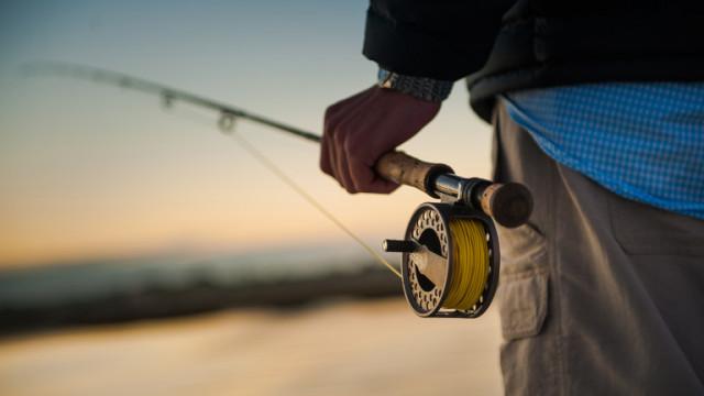 Масово ловене на риба с електрошок в река Дунав