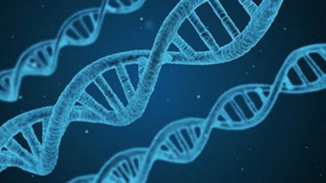 Учени създадоха ранни ембриони от човешки клетки