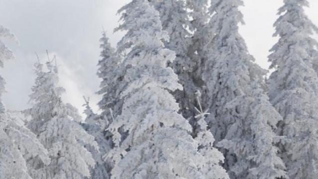 Като за първа пролет: България е покрита от снежна пелена