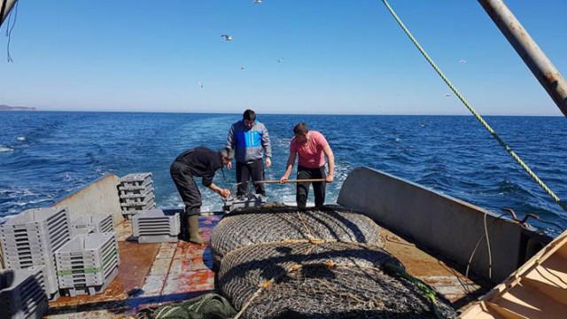 """Фотоизложба """"Навътре: Среща отблизо с Черноморския риболов"""", откриват във Варна на 27 юни"""