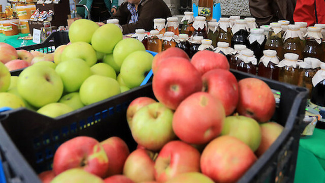 Храните-антиоксиданти, които засилват имунната система