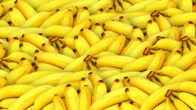 Силно заразна гъба в почвата застрашава бананите с изчезване