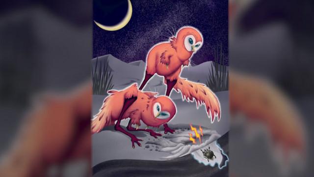 Дино-птица ловувала в пълна тъмнина преди 65 млн. години