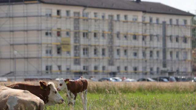COVID-19 осветли злоупотребите в месната промишленост в Германия