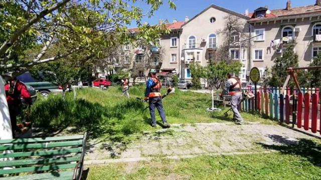 Косенето на територията на община Варна се извършва по график