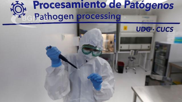 Нов вариант на коронавируса откриха в Бразилия