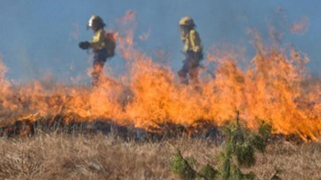 Пожар край язовир Огоста в Монтана