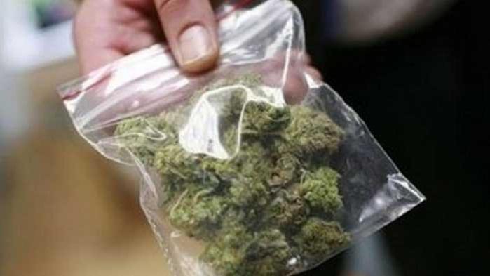 Млад мъж от Варна ще бъде съден за разпространение на марихуана