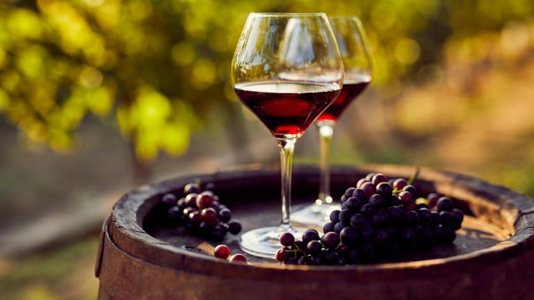 Биодинамично вино и какво представлява биодинамичното земеделие