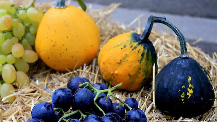 Как да разпознаем плодовете и зеленчуците с нитрати