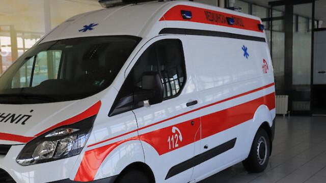 Куче прекоси половин Истанбул, следвайки линейката със стопанката си