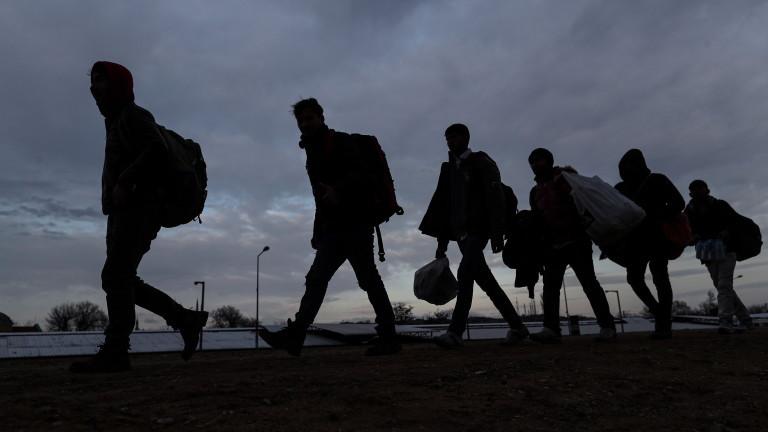 Откриха мигранти в цех за дърводобив в Старозагорско