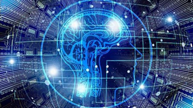 Учени откриха нов клас клетки на паметта в мозъка
