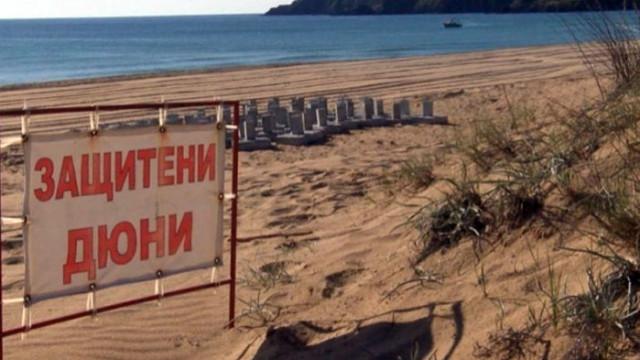 """Фирмени връзки на Димитър Найденов от ДБ с дружеството, което бетонира плаж """"Смокиня-Север""""?"""