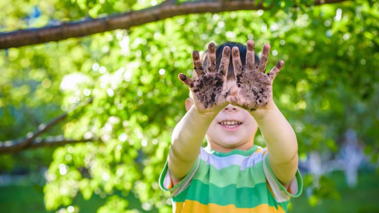 Стерилна среда: Новата теория за детския имунитет и алергиите