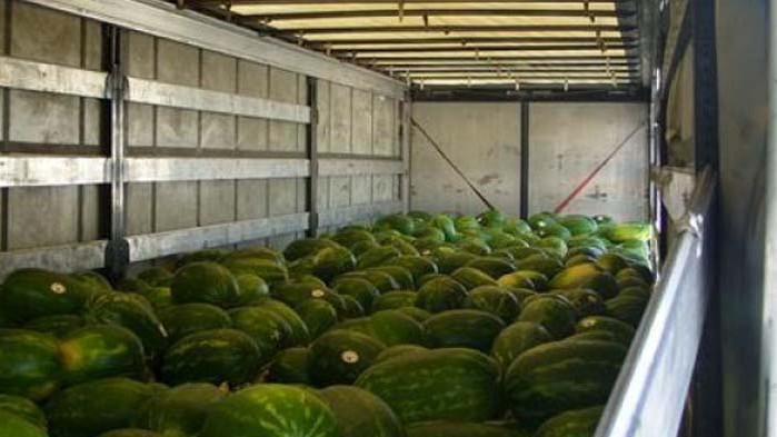 Пореден случай на заловени мигранти в камион с дини от началото на юни