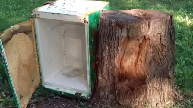 Вандали потрошиха къщичката за книги в парка в Аспарухово