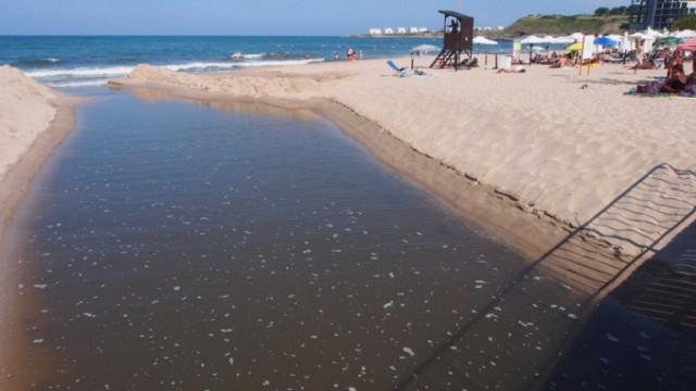 Установиха разминаване на границите на плажовете край Лозенец
