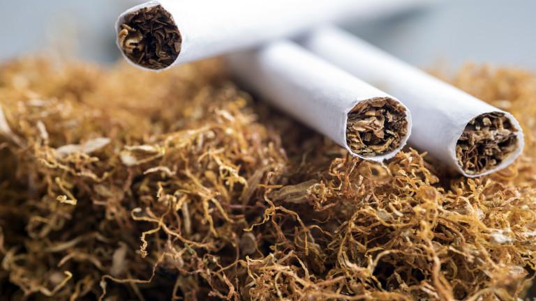 България продължава да държи ниски нива на контрабандата от цигари
