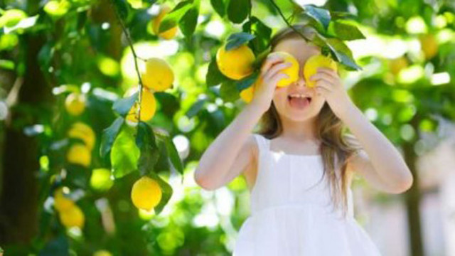 Интересни факти за лимоните