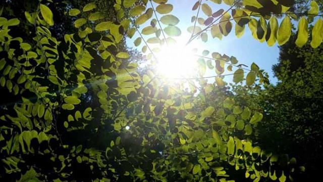 Слънчево, на места с температури до 34 градуса