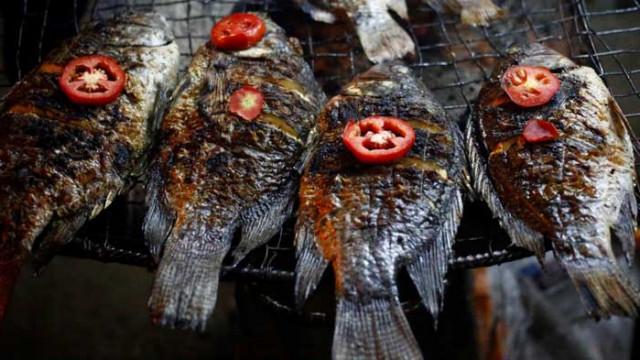 Консумацията на риба защитава мозъка от мръсния въздух