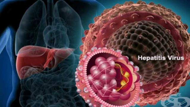 Тихата болест – 80 хиляди души в България имат хепатит С, без да знаят