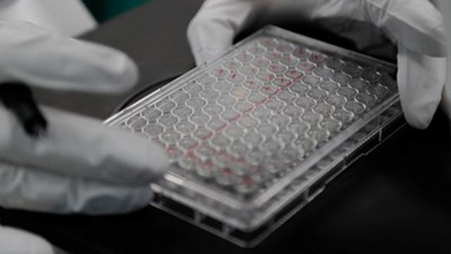През есента ще се разбере действа ли ваксина срещу COVID-19