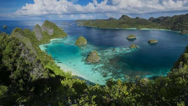 Райски остров крие най-голямото ботаническо съкровище в света