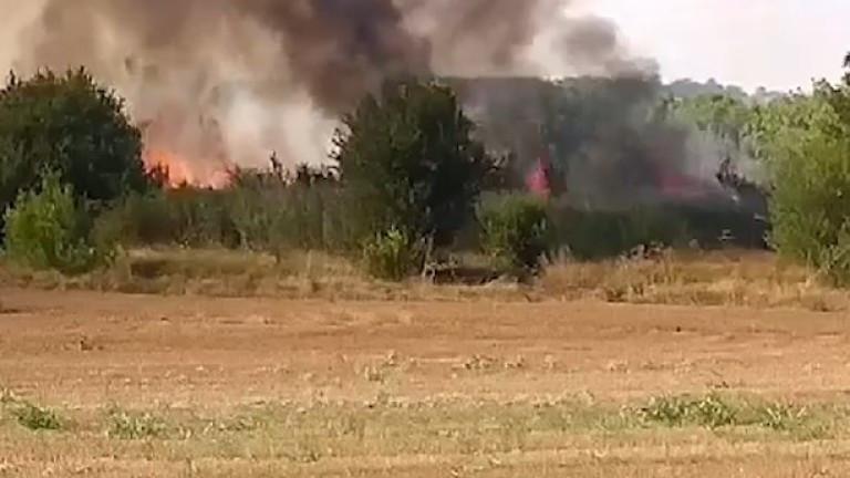 Пожарът край Лесово обхвана 8000 декара