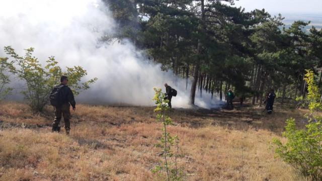Пожар пламна край Шумен