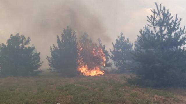 Нови пожари избухнаха в Хасковско