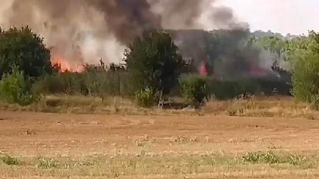 Фас от шофьор на турски ТИР запалил единия пожар в Хасковско